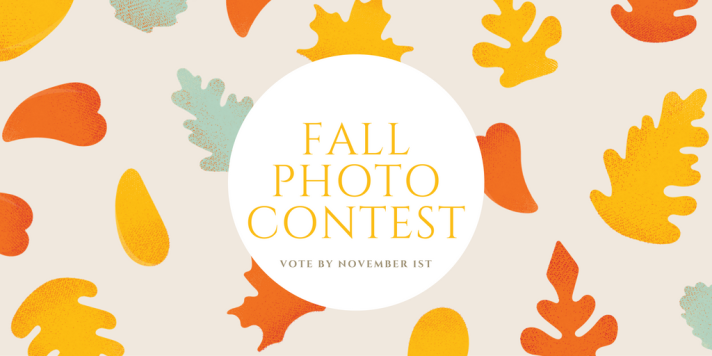 fall-photo-contest-11.png